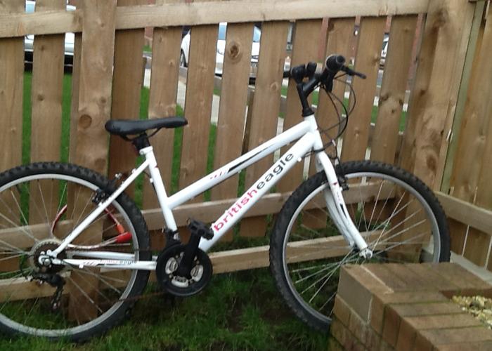 Ladies British Eagle Bicycle - 1