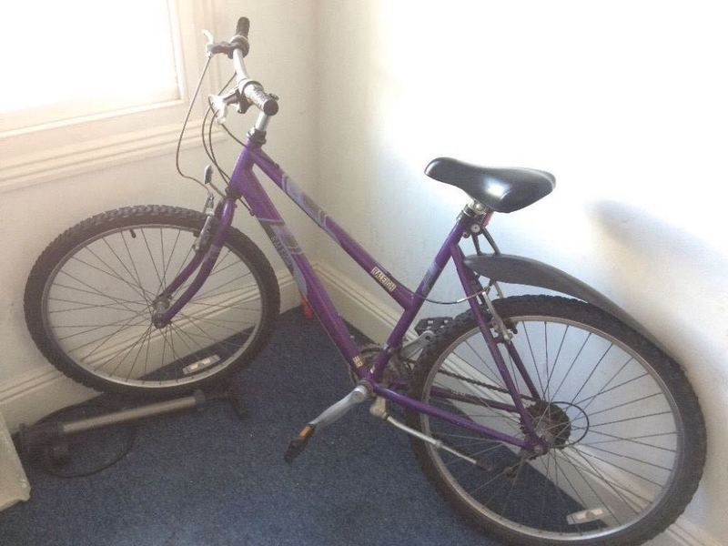 Ladies Mountain Bike - 1
