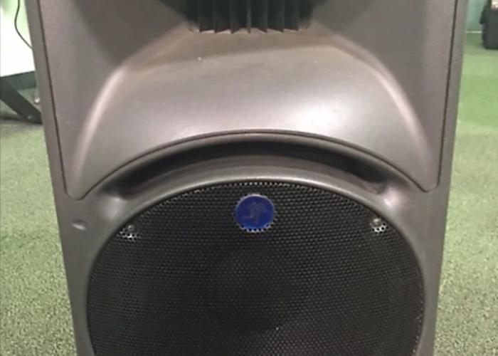 Mackie SRM450 (single) - 1