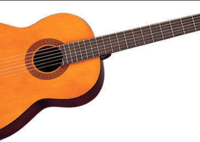 Manual Guitar - 1
