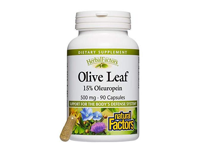 Natural Factors Herbal Factors Olive Leaf 15% Oleuropein (500mg, 90 Capsules) - 1