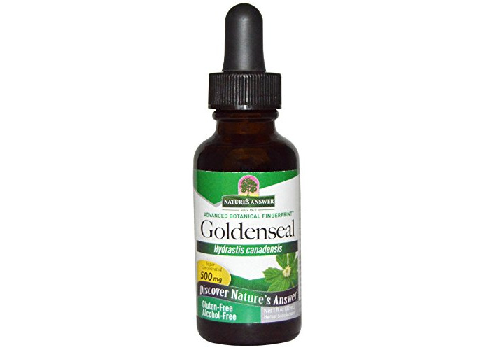 Nature's Answer, Goldenseal, Alcohol Free, 500 mg, 1 fl oz (30 ml) - 1