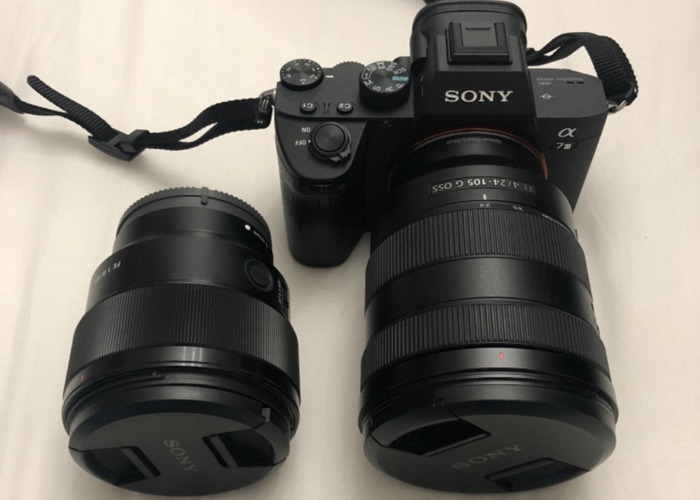 New Sony a7iii with FE 24-105 mm & 85 mm lenses - 2