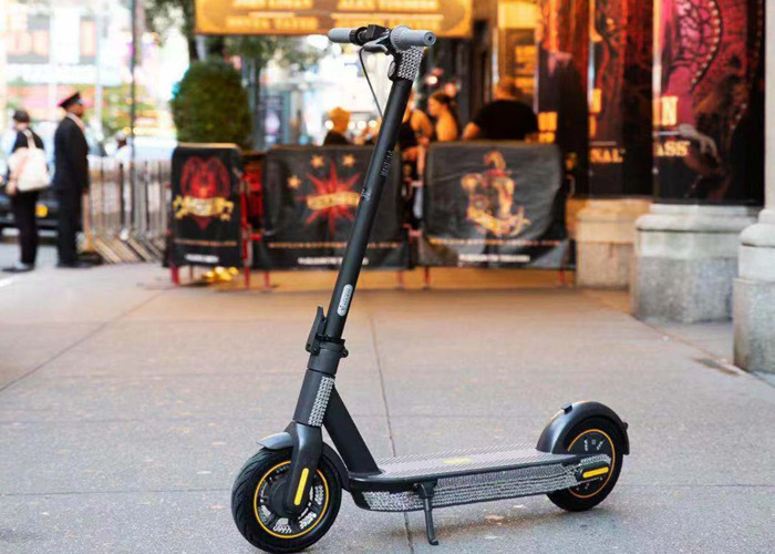 Ninebot Max G30 Electric Scooter  - 1