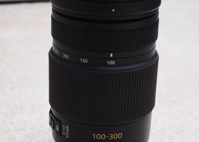 Panasonic 100-300mm F4.0-5.6 OIS Lens - 2