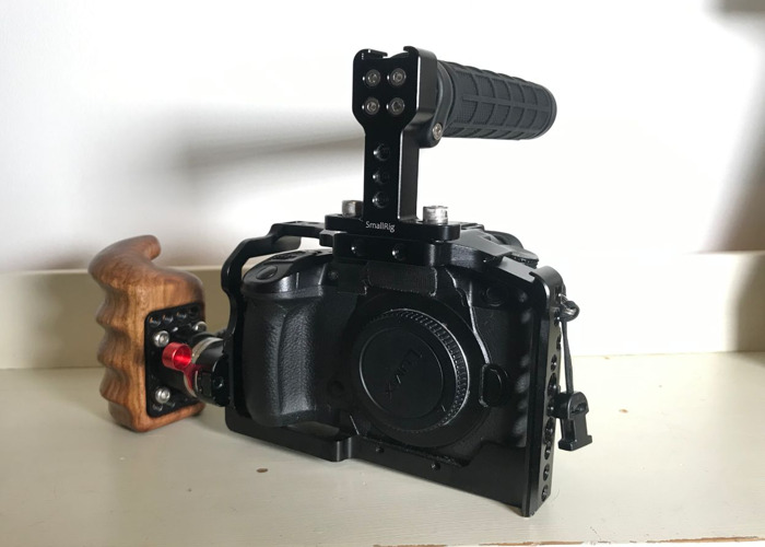 Panasonic GH5S Camera + Small Rig Cage and Handle - 1