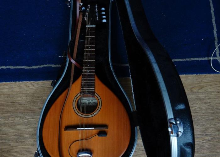 Paul Hathway M1 mandolin - 1