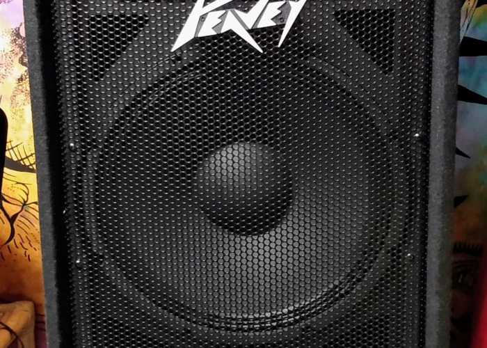 Peavey 215 PA System MED - 1