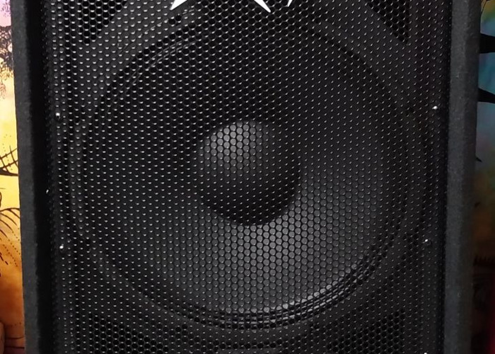 Peavey 215 PA System MED - 2