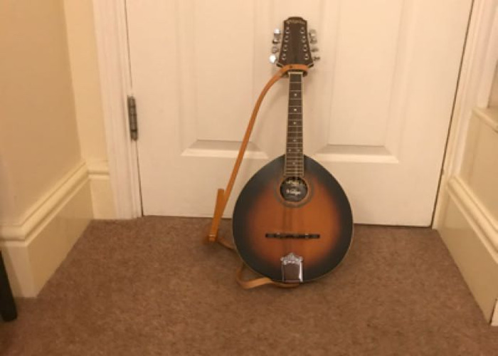 Pilgrim Mandolin In Great Condition - 1