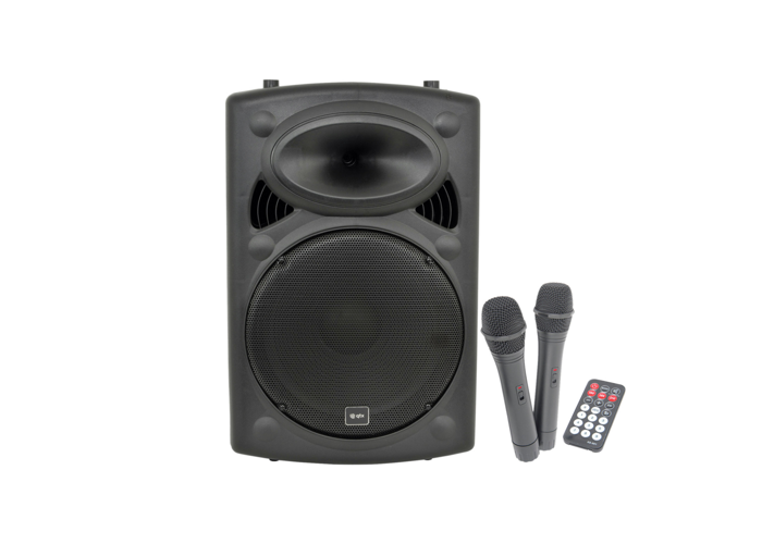 PA System With 2 Wireless Mics - 2