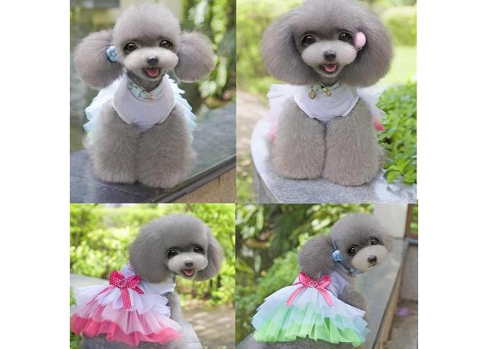 Puppy Dog Cat Pet Summer Dress Lace Apparel Skirt Dress Sleeveless Braces - 2