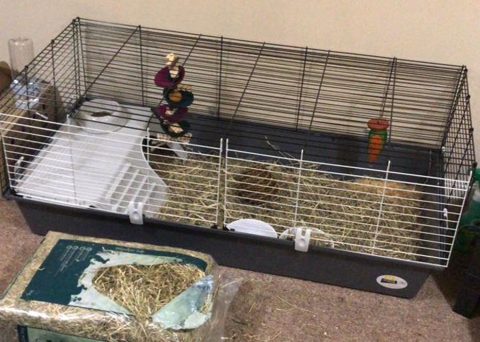 Rabbit/guinea pig cage - 1