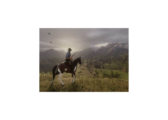 Red Dead Redemption 2 ps4 - 1