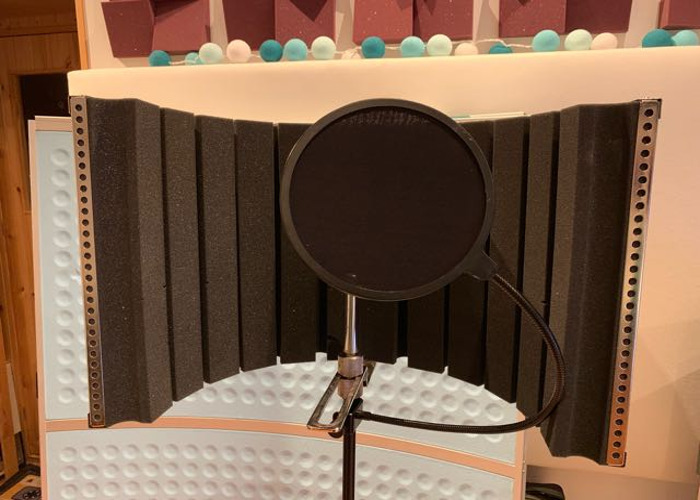 Reflection shield, pop filter, mic stand - 1