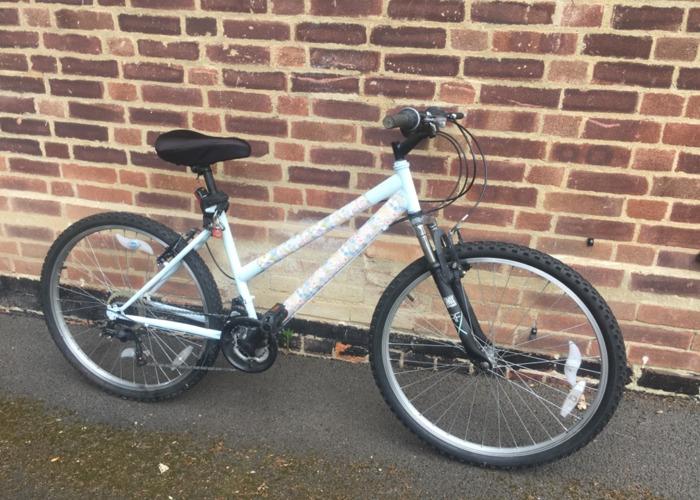 Roxana's bike - 1