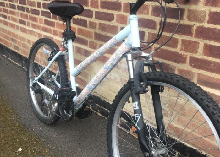 Roxana's bike - 2