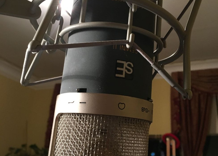 SE Electronics Gemini II Mic - Vacuum Tube Microphone  - 2