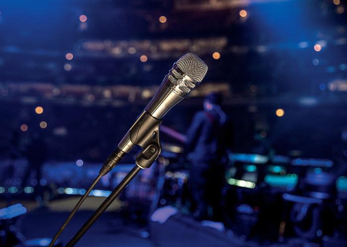 Shure KSM8 Dualdyne Cardioid Dynamic Vocal Microphone - 2
