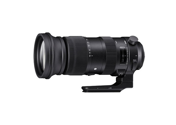 Sigma 60-600mm f4.5-6.3 OS HSM Sports Lens - Sigma - 1