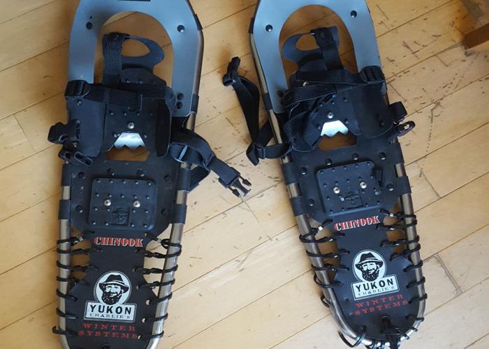 snow shoes - 1