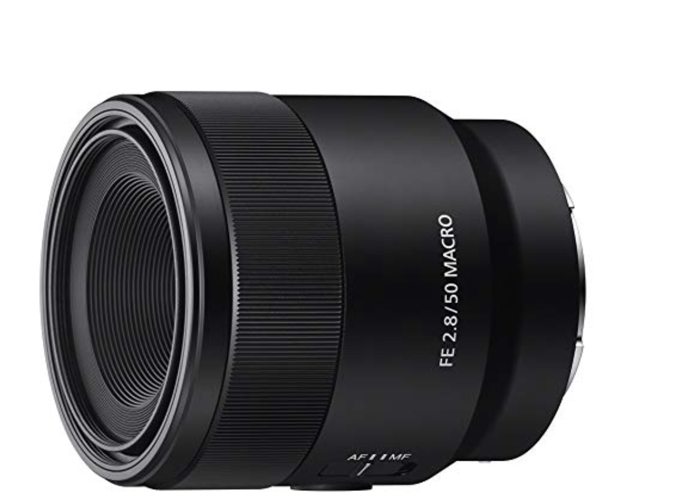 Sony 50mm F2.8 macro  - 1