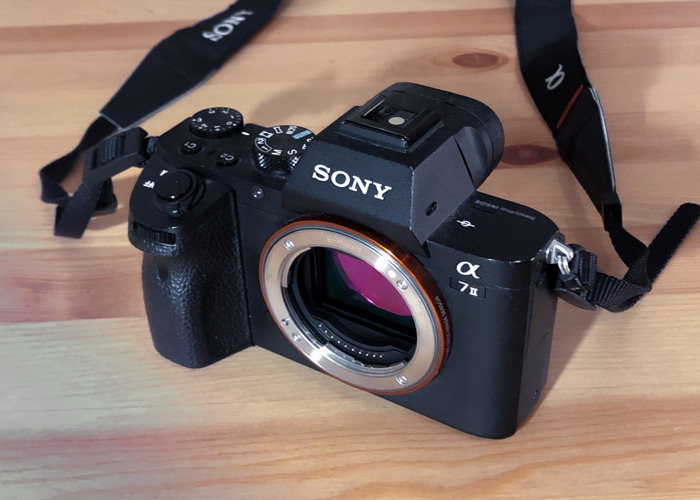 Sony A7 ii - 1