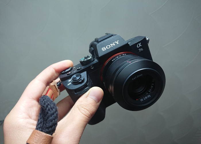 Sony A7II + 35mm F2.8 Zeiss - 1