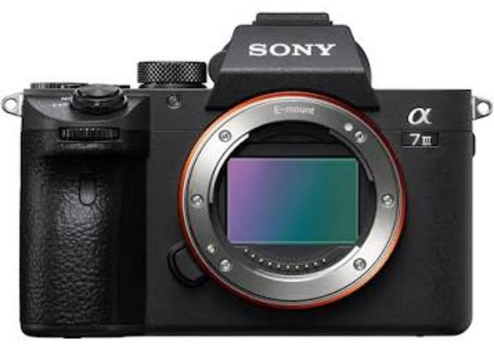 Sony A7iii  - 1