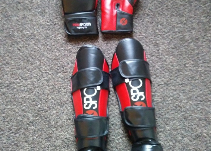 Sparring gloves and shin guards - 2