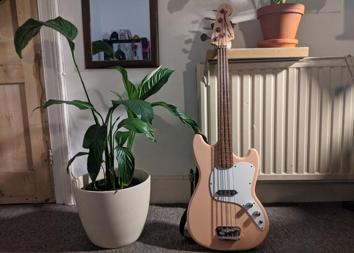 Squier Vista Musicmaster Bass - RARE Shell Pink - 2