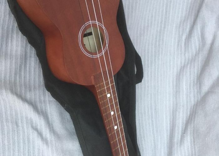 Stagg Concert Ukulele - 2