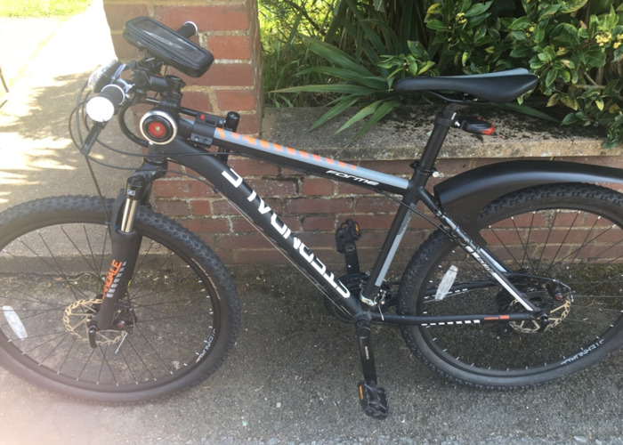 Sterndale forme 3000 hard tail mountain bike - 1