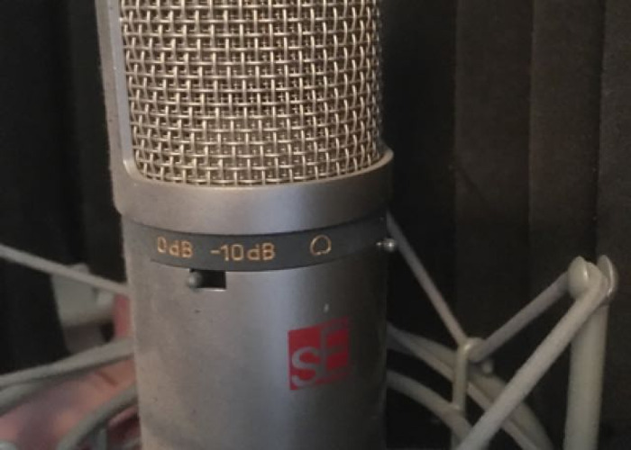 Studio Condensor Microphone With Sound Baffle - 2