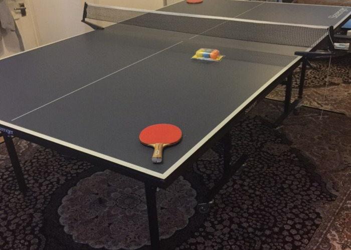 Table Tennis Table with equipment  - 1