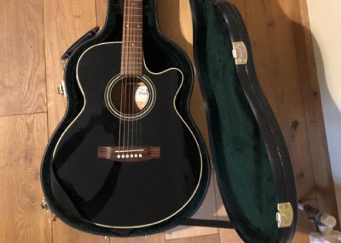 Takamine Dragon Series Electro Acoustic Guitar - 1