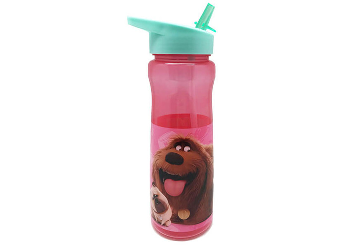 The Secret Life of Pets 2 600ml Drinks Bottle - 1