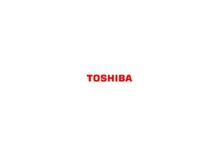 Toshiba B-7208-QM-R - Swing Cutter - Swing Cutter B852 - 2
