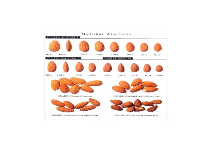 Variety of sizes - 1