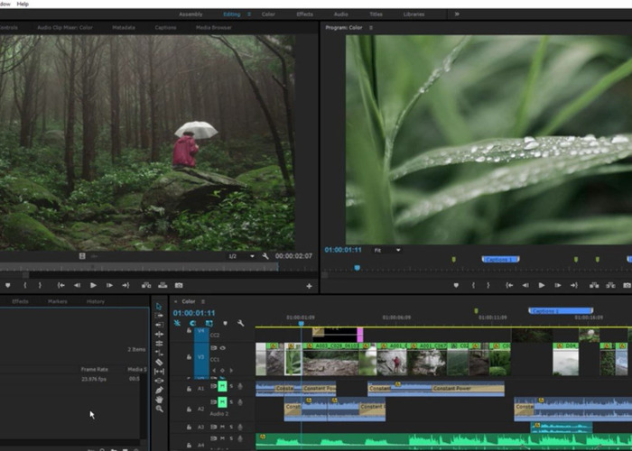 Professional Video Editor (Adobe CC and DaVinci Resolve) - 1