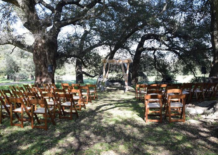 Wedding arbor - 2