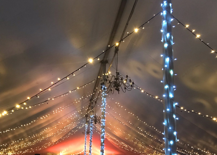 Wedding/ Garden party fairy light & festoon lighting package - 2