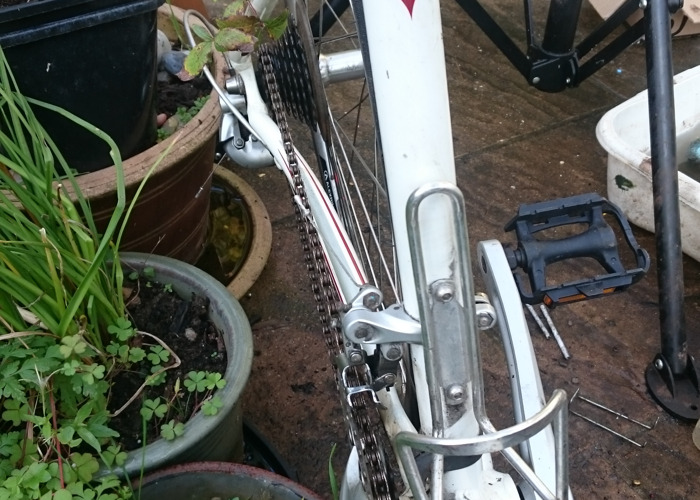 Women's Bike  - 2