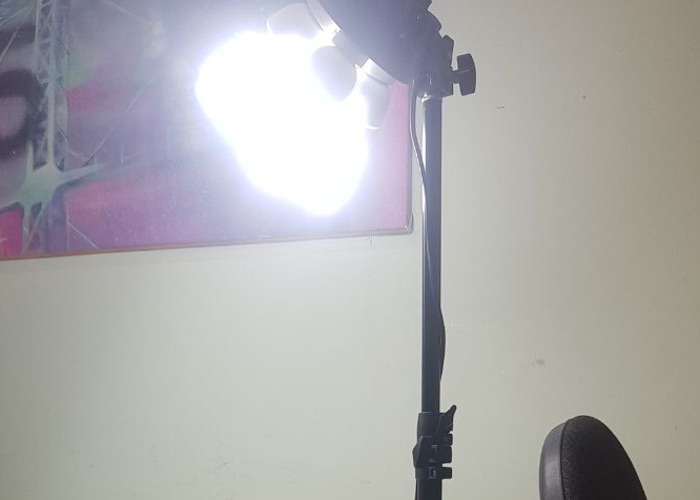 Zyon replacement photographic light. (x4) - 2